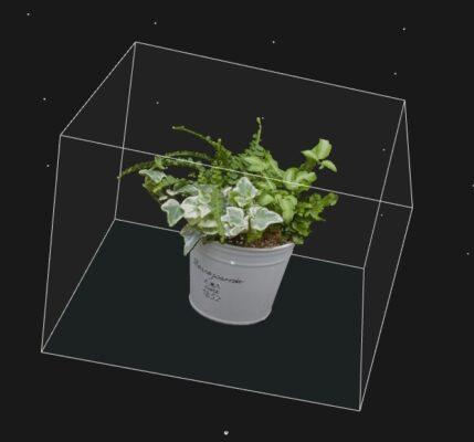 リアリティーキャプチャ-植物