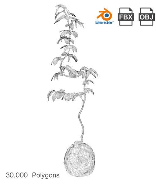 Free-3Dmodel-mossball-plants