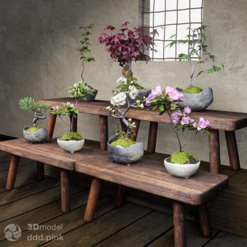 3Dmodel-苔玉-盆栽鉢セット