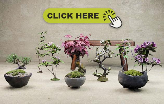 盆栽3dモデル