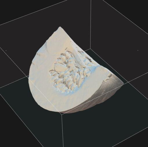 かぼちゃ3Dモデル素材フォトグラメトリ