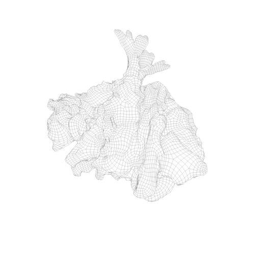 ワイヤーフレーム陰線レンダリング和食3D-天ぷら
