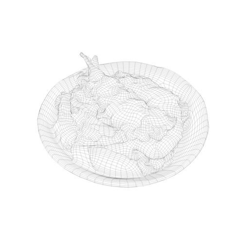ワイヤーフレーム陰線レンダリング和食3D-天丼