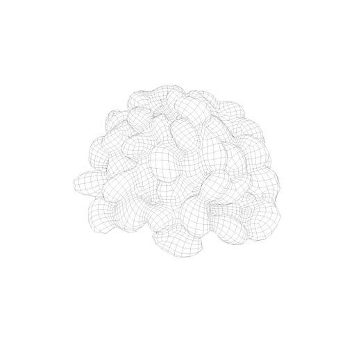 ワイヤーフレーム陰線レンダリング納豆3D