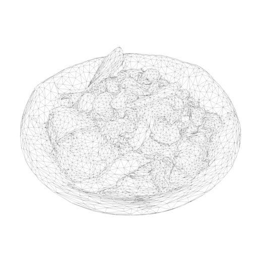 ワイヤーフレーム陰線レンダリング和食3D