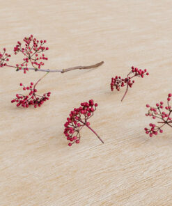 赤い実|無料3D素材|フォトグラメトリ|リアル3Dモデル